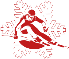 Logo Snow stars team